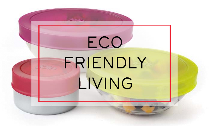 Eco Friendly Living