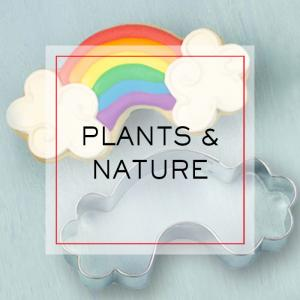 Plants and Nature